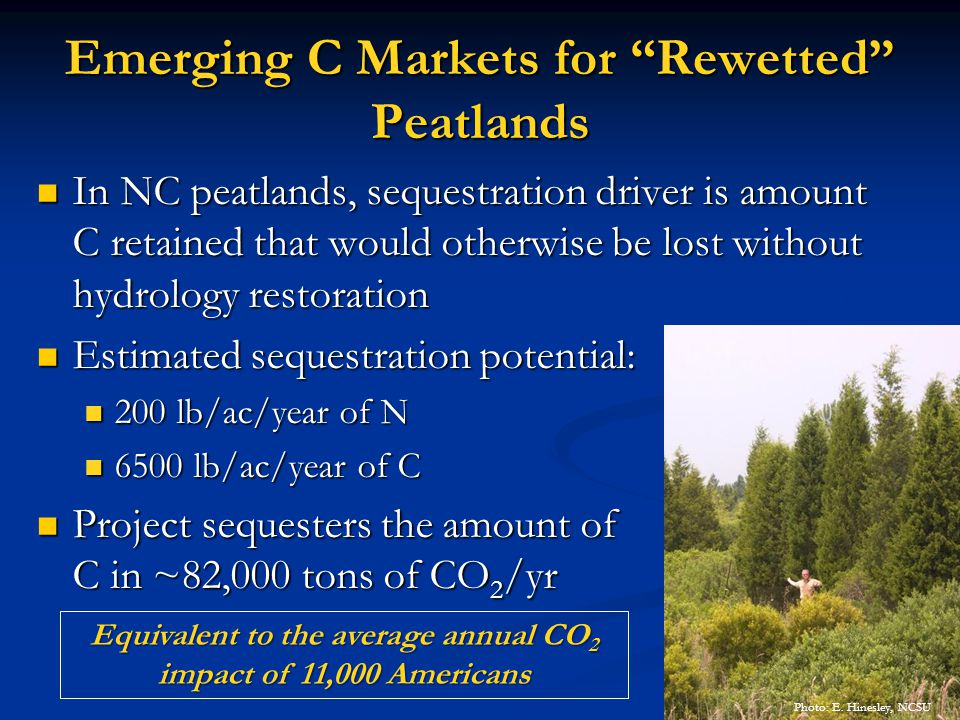 Emerging C Markets for Rewetted Peatlands