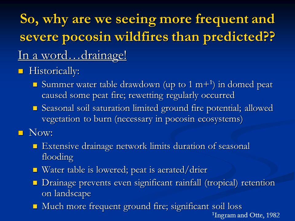 So, why are we seeing more frequent and severe pocosin wildfires than predicted