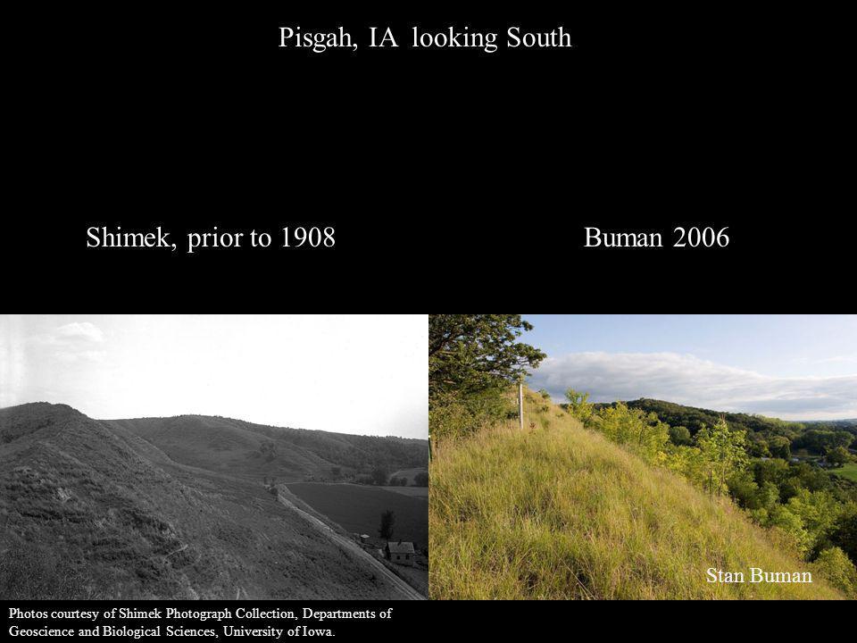 Pisgah, IA looking South