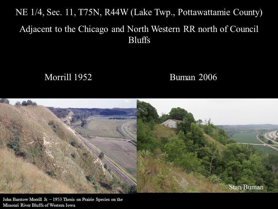 NE 1/4, Sec. 11, T75N, R44W (Lake Twp., Pottawattamie County)