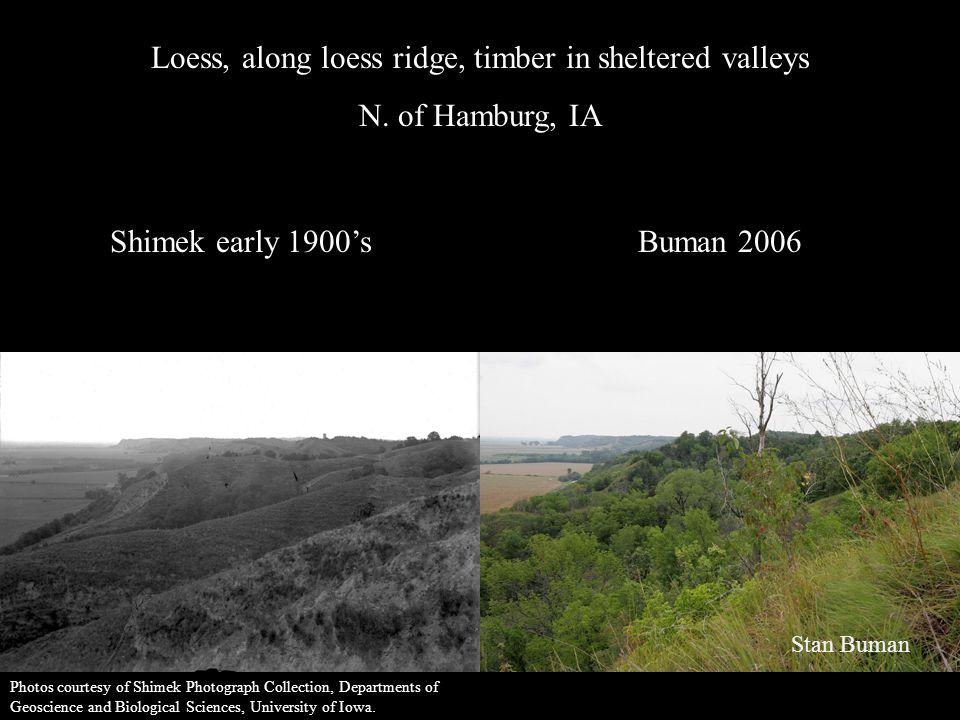 Loess, along loess ridge, timber in sheltered valleys