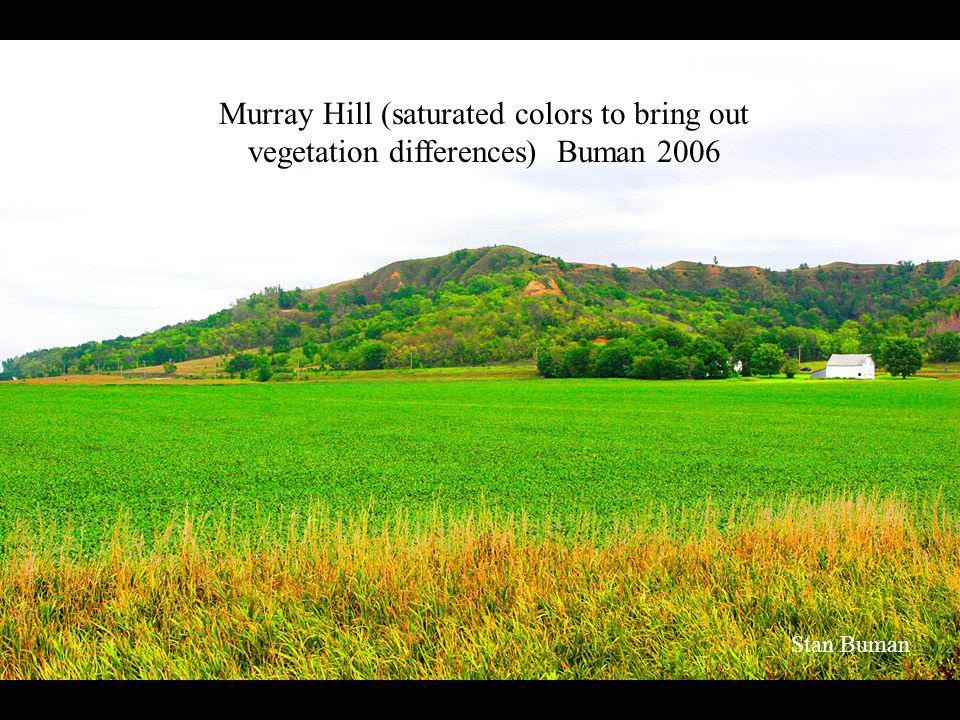 Murray Hill (saturated colors to bring out vegetation differences) Buman 2006