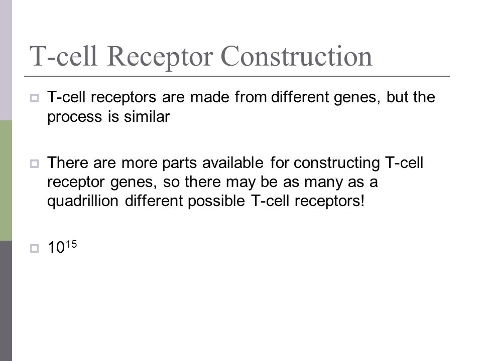 T-cell Receptor Construction