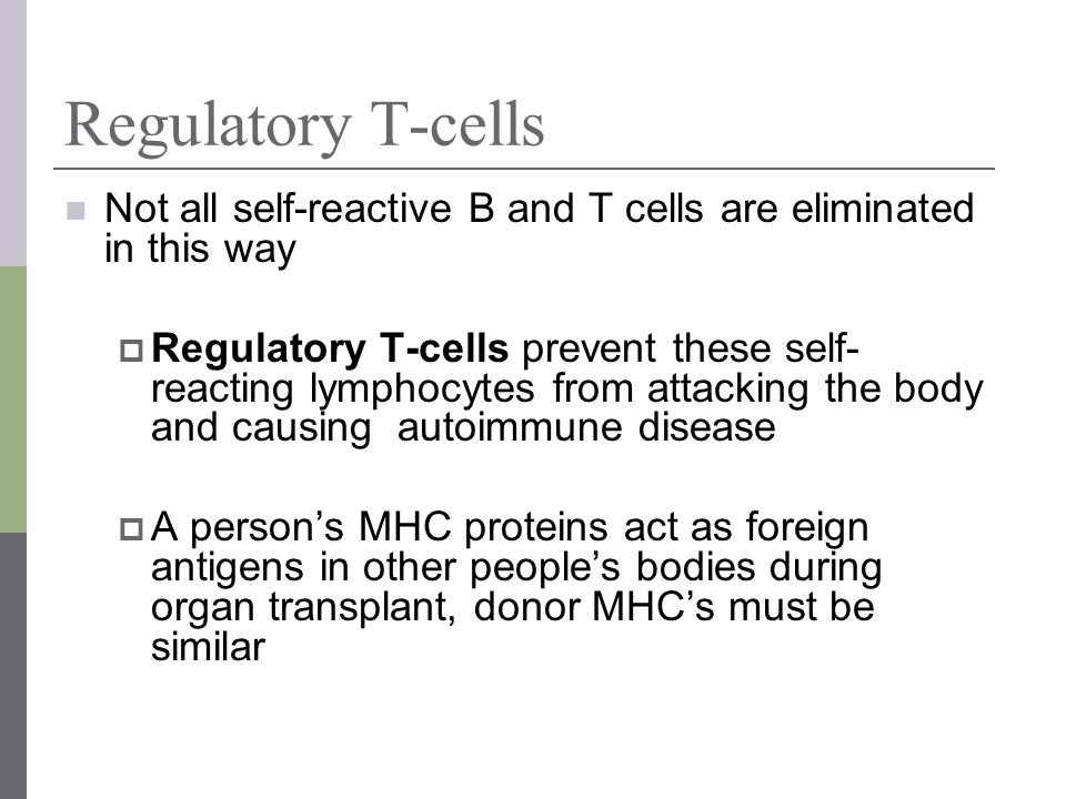 Regulatory T-cells Not all self-reactive B and T cells are eliminated in this way.