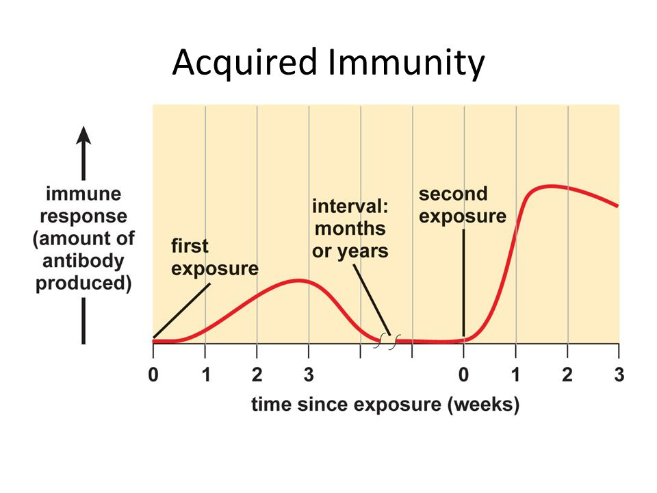 Acquired Immunity