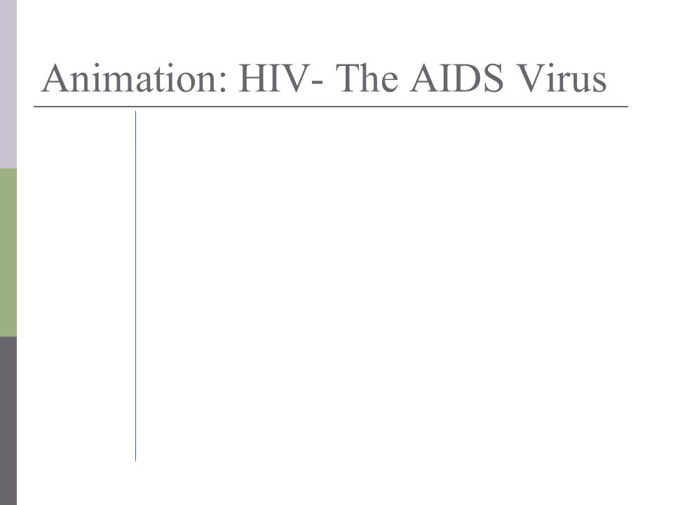 Animation: HIV- The AIDS Virus
