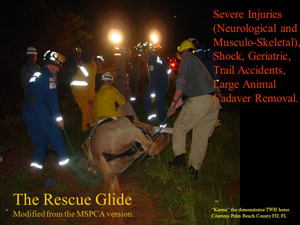 The Rescue Glide Severe Injuries (Neurological and Musculo-Skeletal),