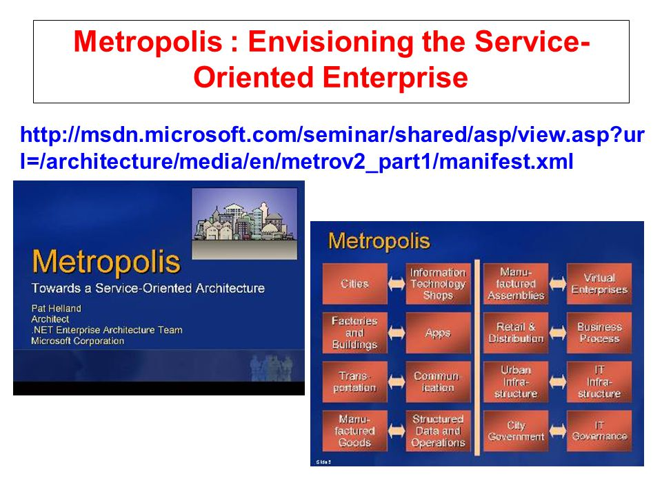 Metropolis : Envisioning the Service-Oriented Enterprise