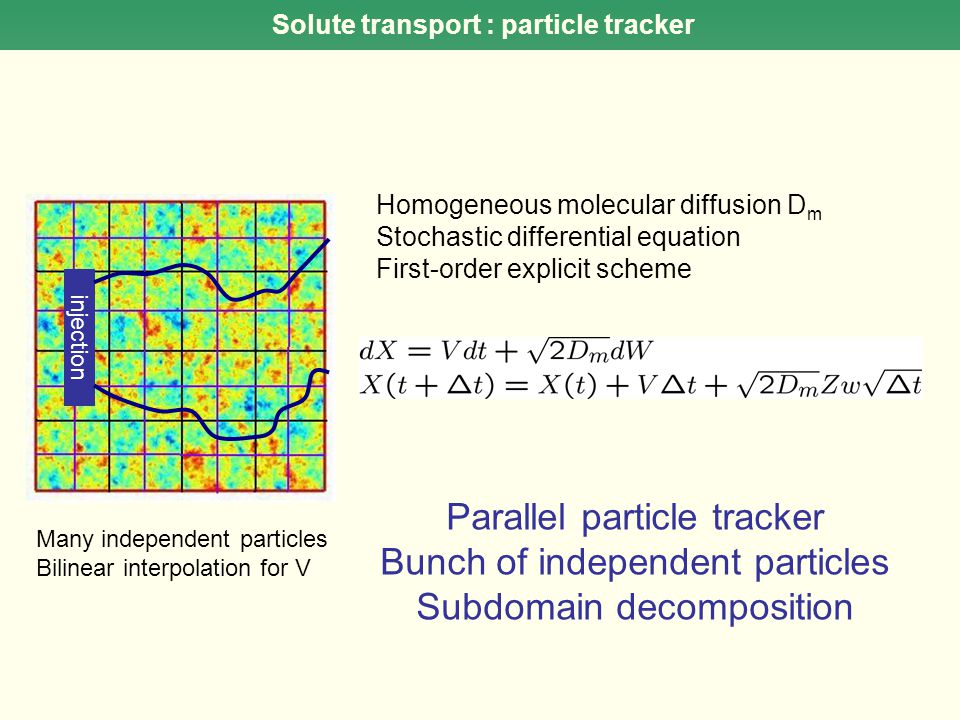 Solute transport : particle tracker