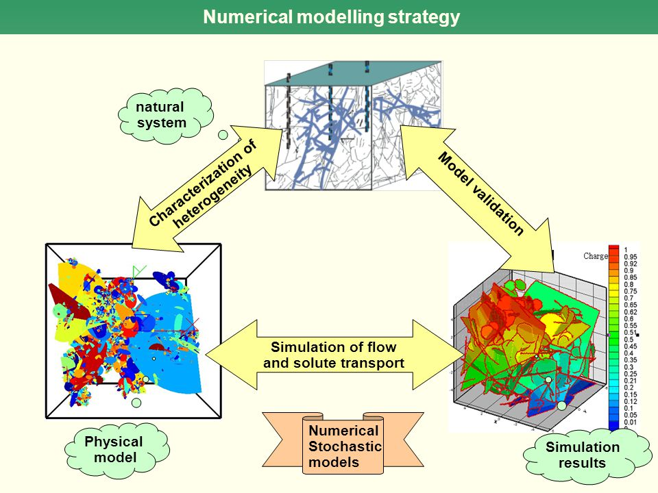 Numerical modelling strategy