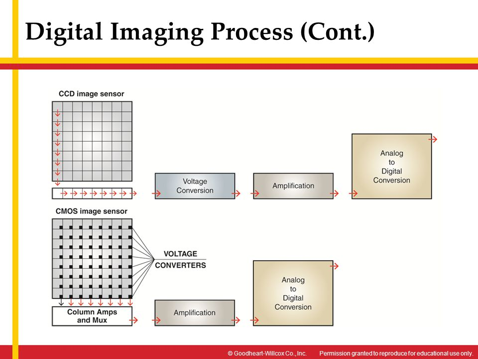 Digital Imaging Process (Cont.)