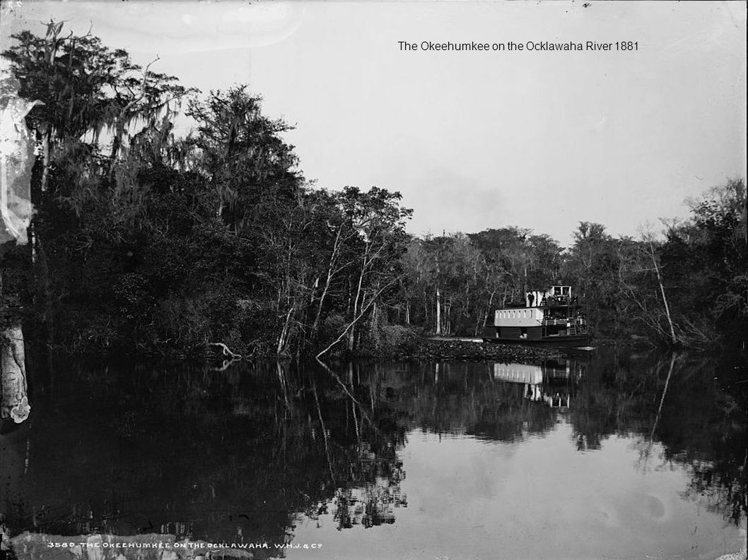 The Okeehumkee on the Ocklawaha River 1881