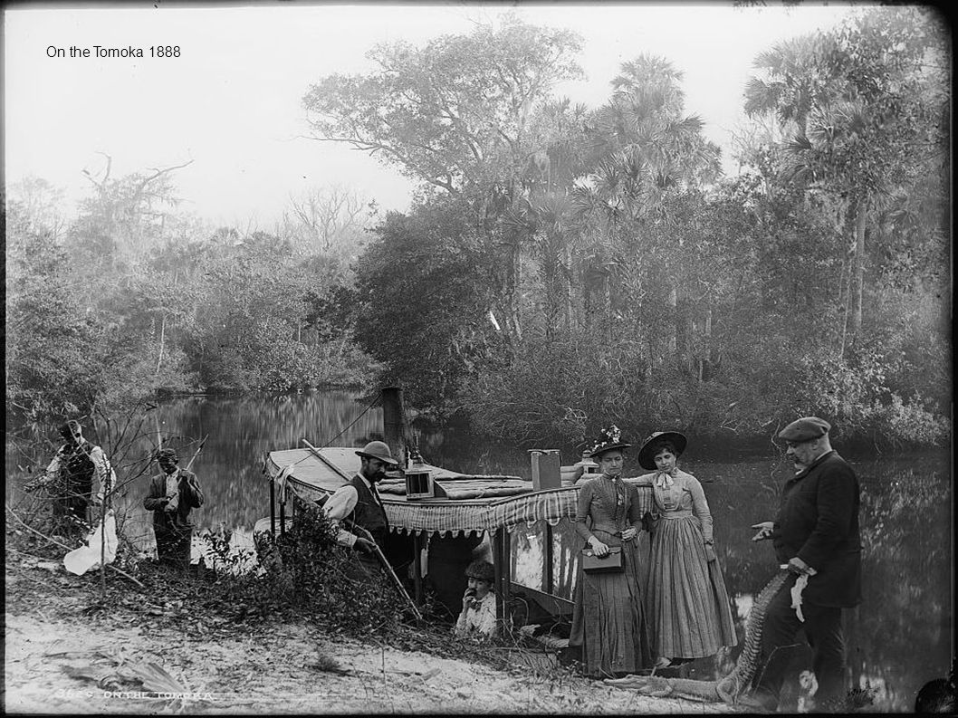 On the Tomoka 1888