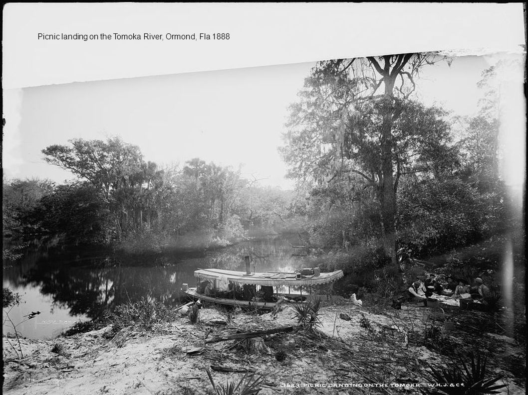 Picnic landing on the Tomoka River, Ormond, Fla 1888