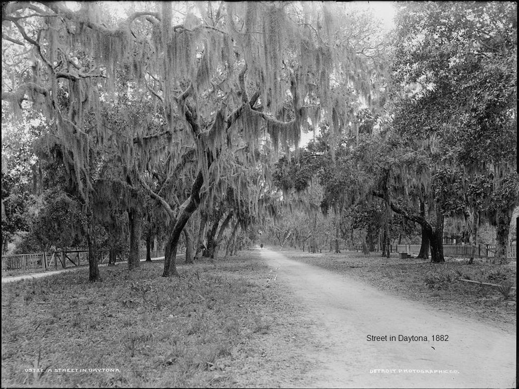 Street in Daytona, 1882