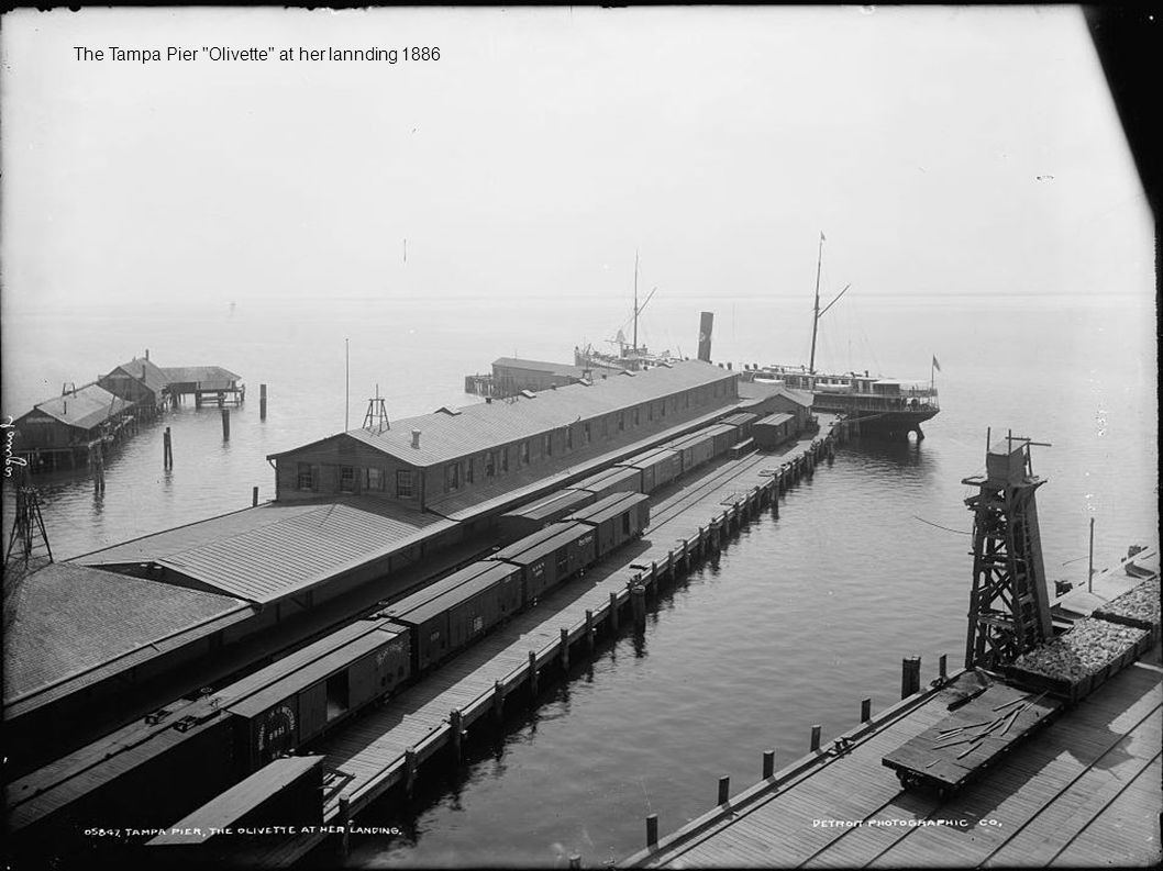 The Tampa Pier Olivette at her lannding 1886