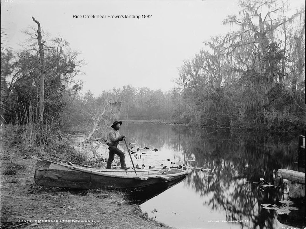 Rice Creek near Brown s landing 1882