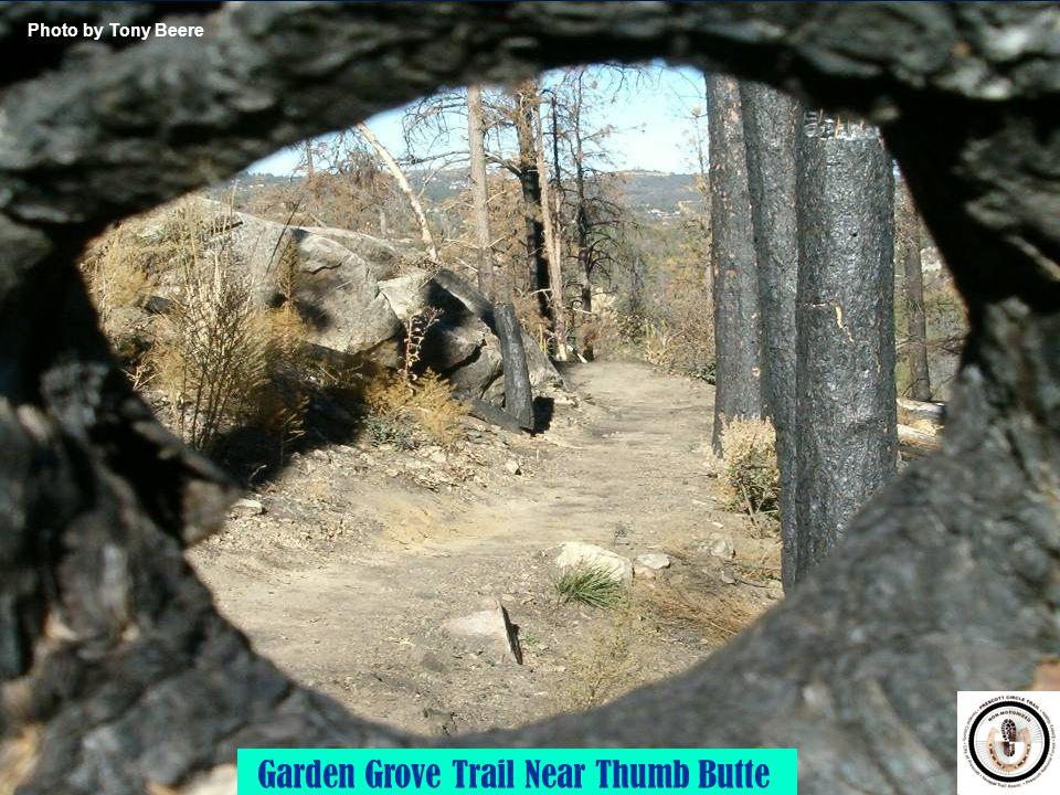 Garden Grove Trail Near Thumb Butte