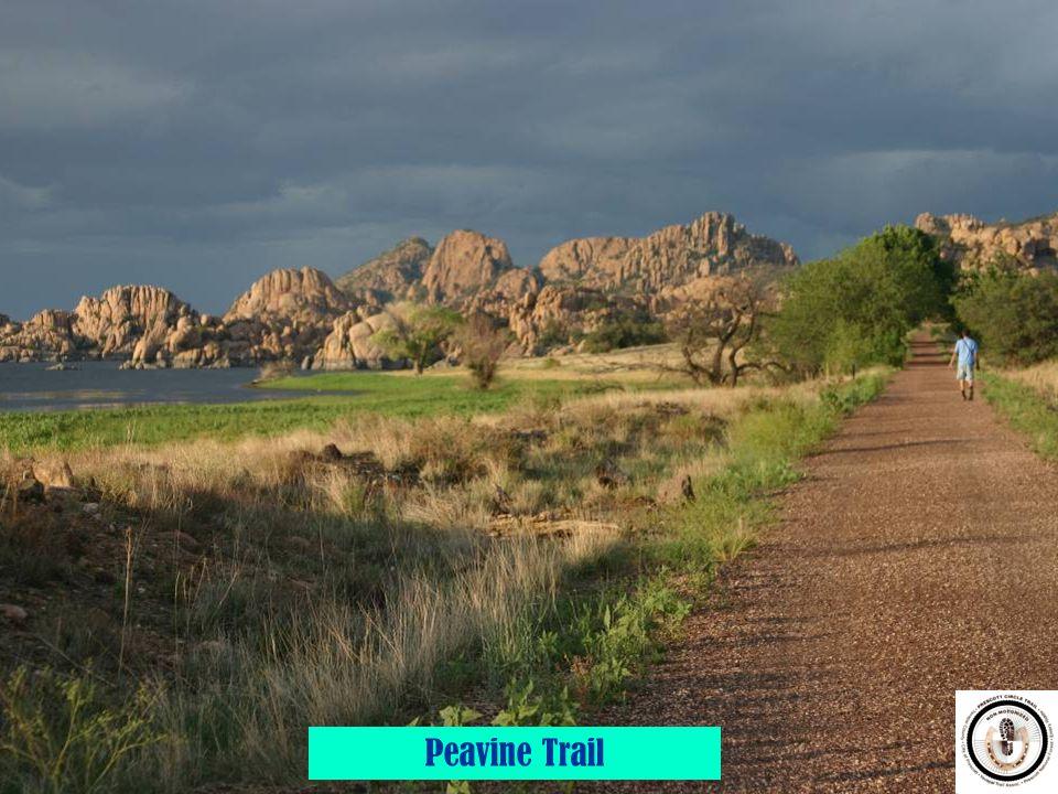Peavine Trail