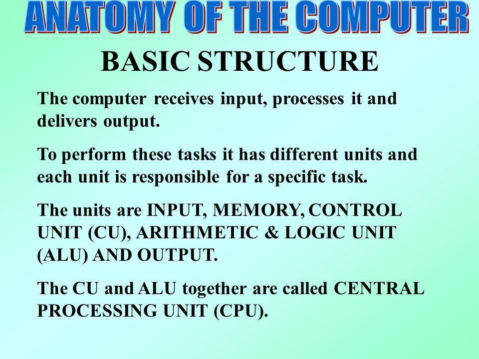 ANATOMY OF THE COMPUTER