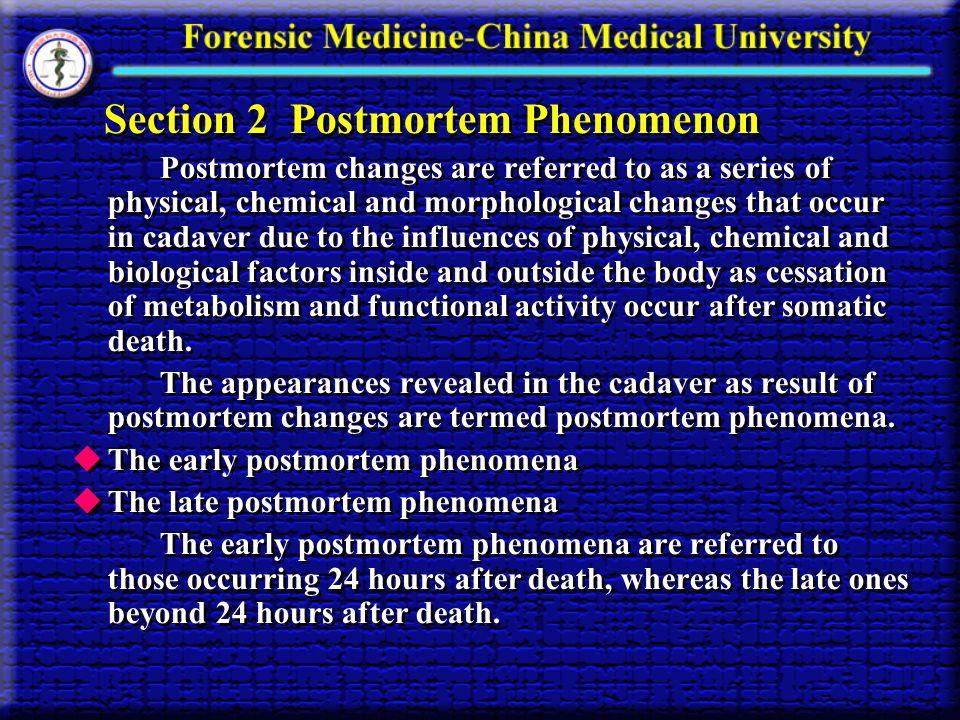 Section 2 Postmortem Phenomenon