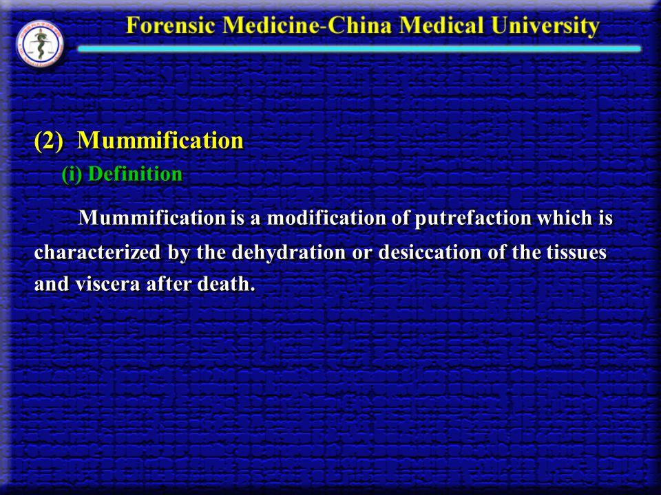 (2) Mummification (i) Definition.
