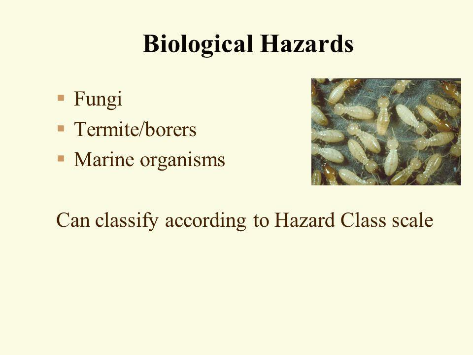 Biological Hazards Fungi Termite/borers Marine organisms