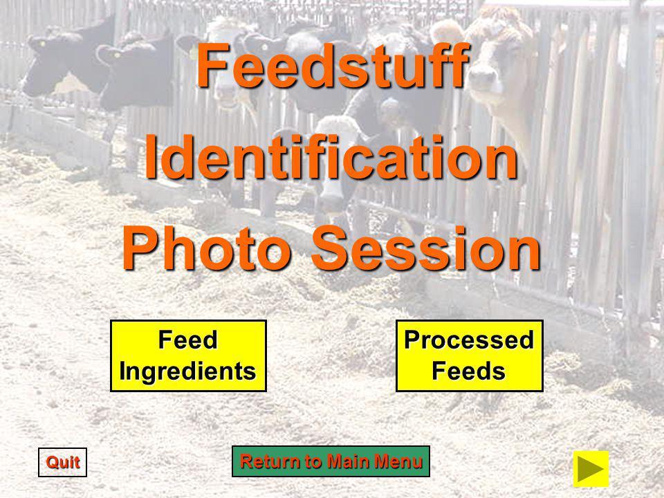 Feedstuff Identification Photo Session