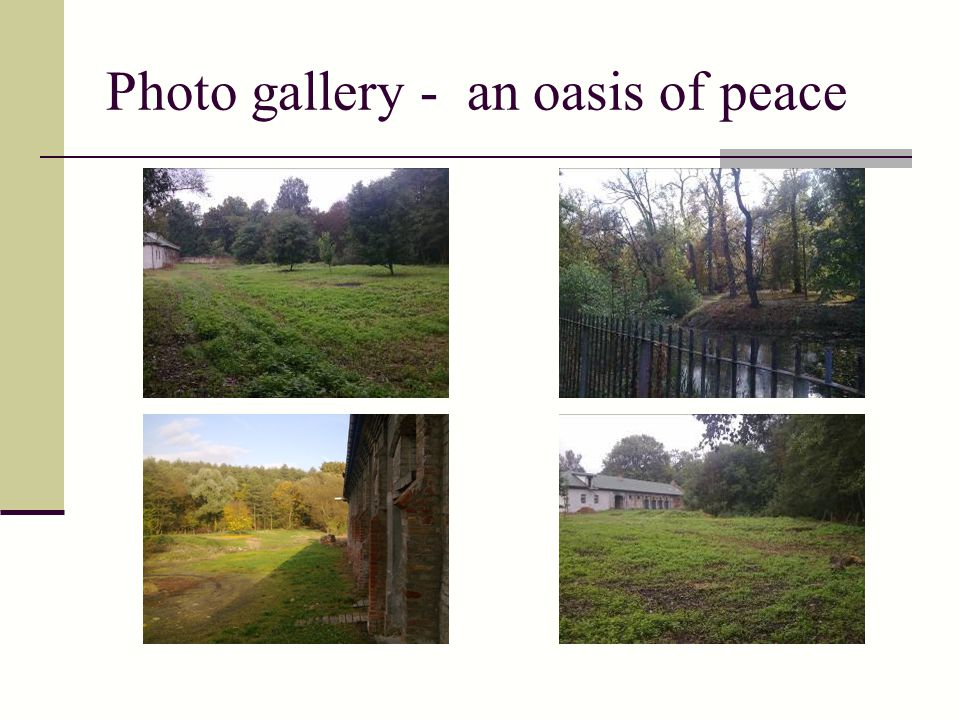 Photo gallery - an oasis of peace