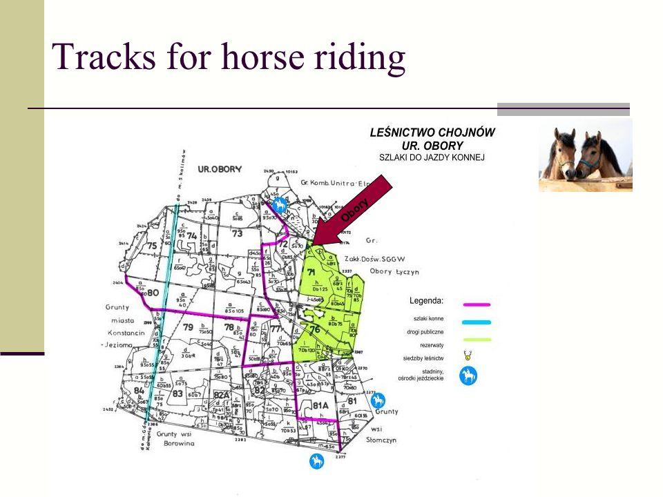Tracks for horse riding