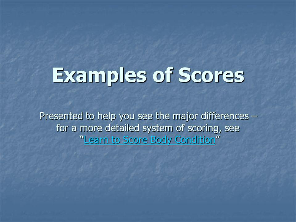 Examples of Scores Presented to help you see the major differences – for a more detailed system of scoring, see Learn to Score Body Condition