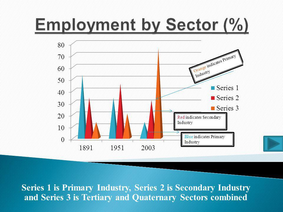 Employment by Sector (%)