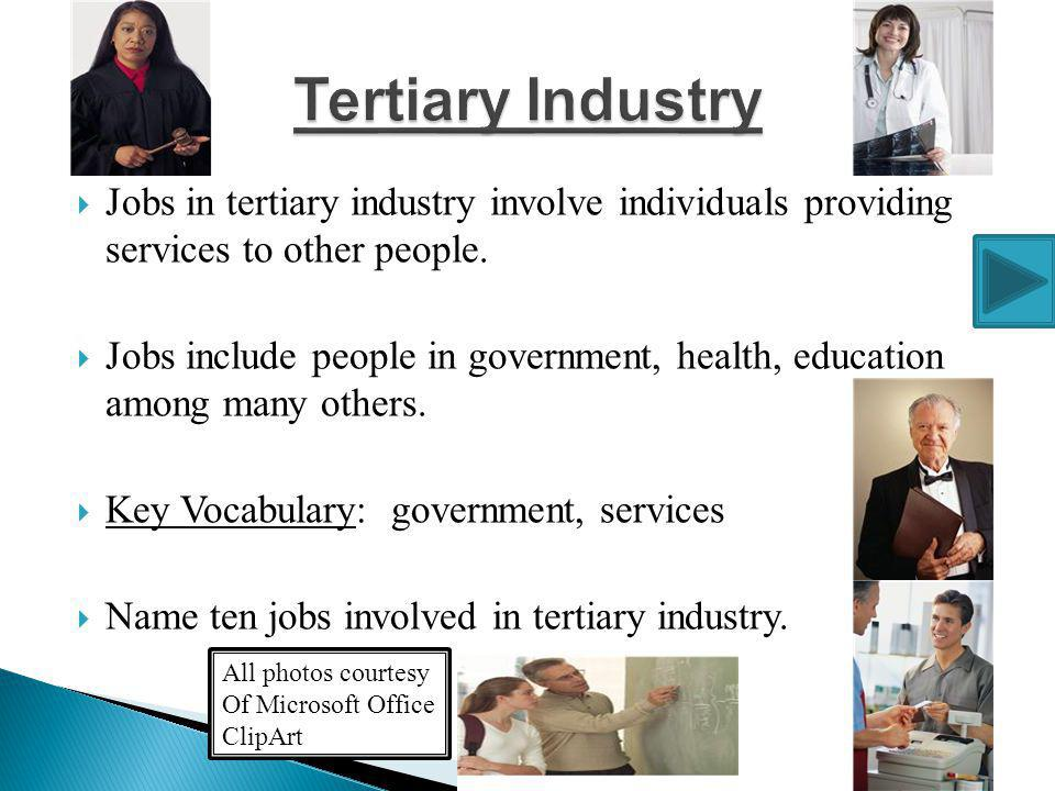 Tertiary Industry Jobs in tertiary industry involve individuals providing services to other people.