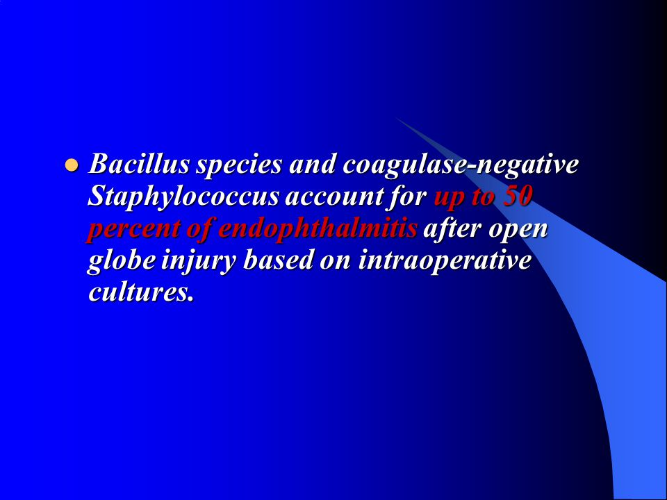 Bacillus species and coagulase-negative Staphylococcus account for up to 50 percent of endophthalmitis after open globe injury based on intraoperative cultures.