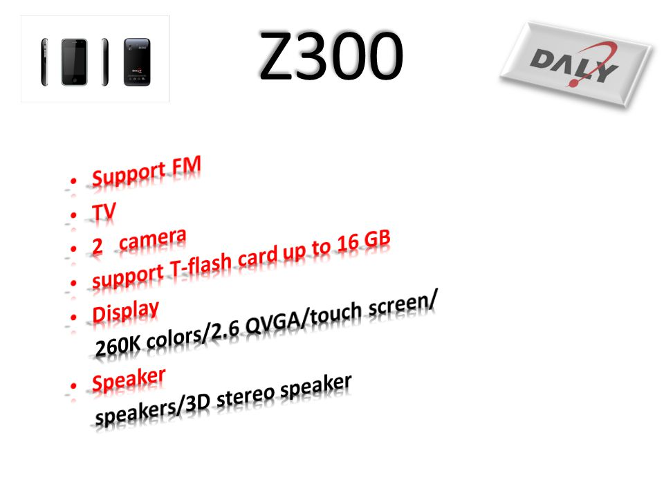 Z300 Support FM TV 2 camera support T-flash card up to 16 GB Display