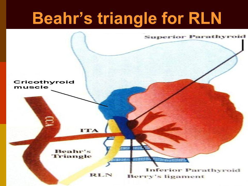 Beahr's triangle for RLN