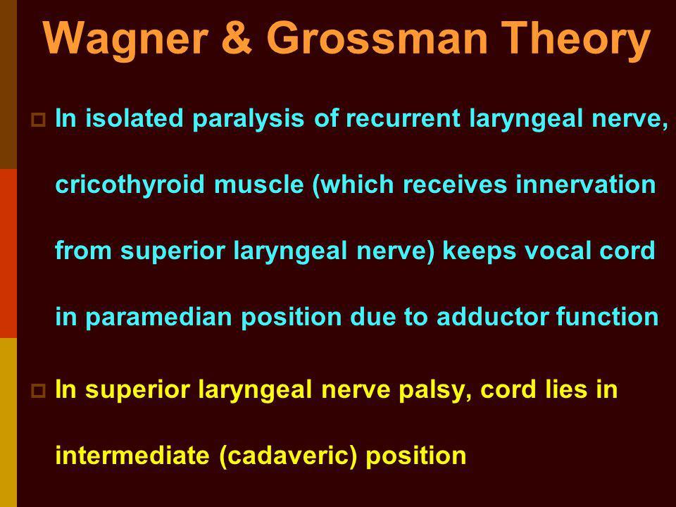 Laryngeal theory