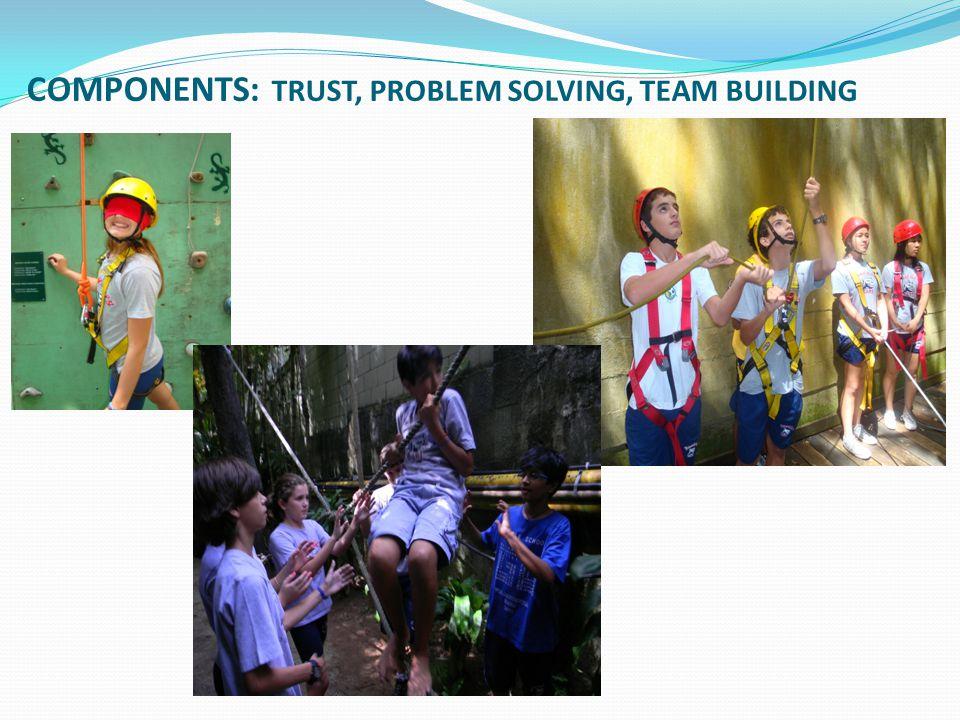 COMPONENTS: TRUST, PROBLEM SOLVING, TEAM BUILDING