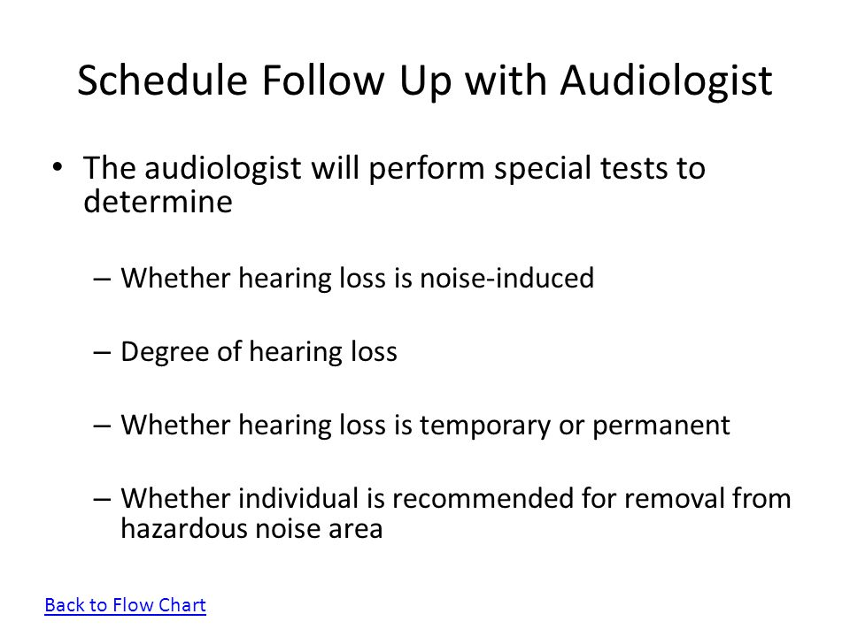 Schedule Follow Up with Audiologist