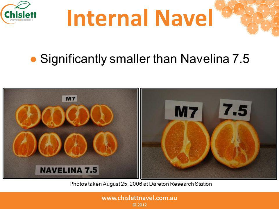 Internal Navel Significantly smaller than Navelina 7.5