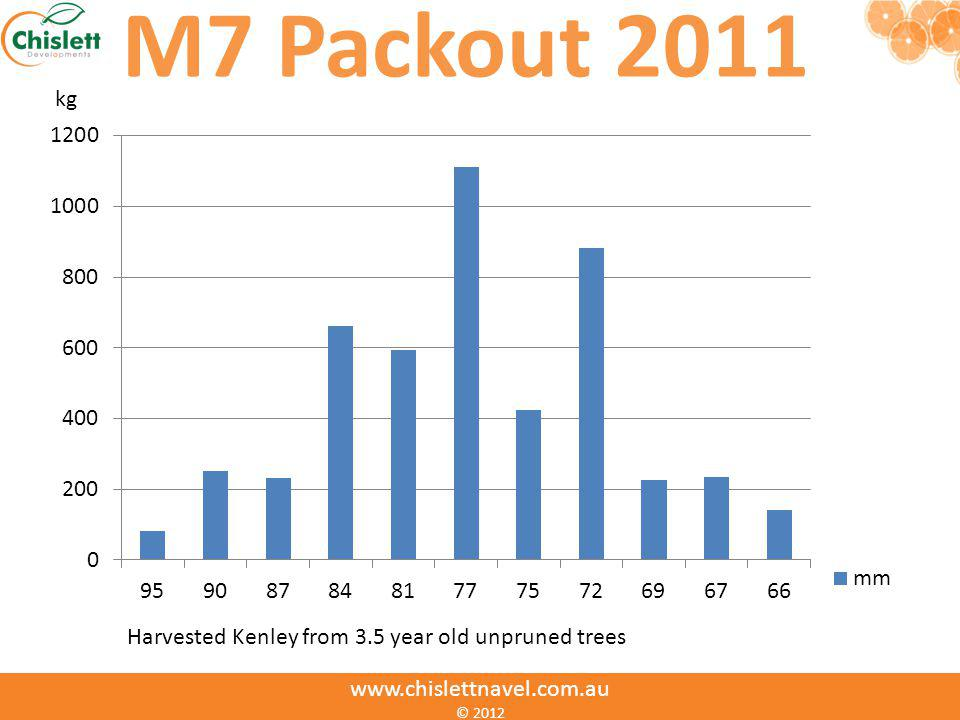 M7 Packout 2011 Harvested Kenley from 3.5 year old unpruned trees