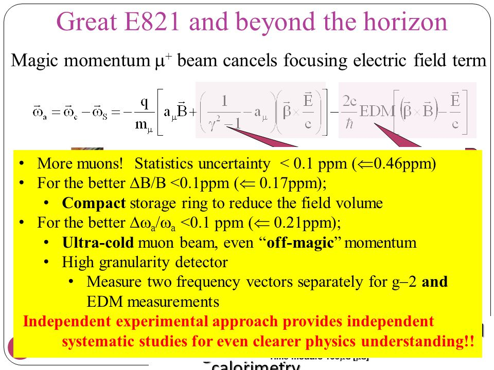 Great E821 and beyond the horizon