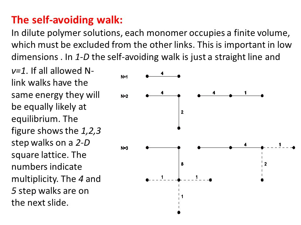 The self-avoiding walk: