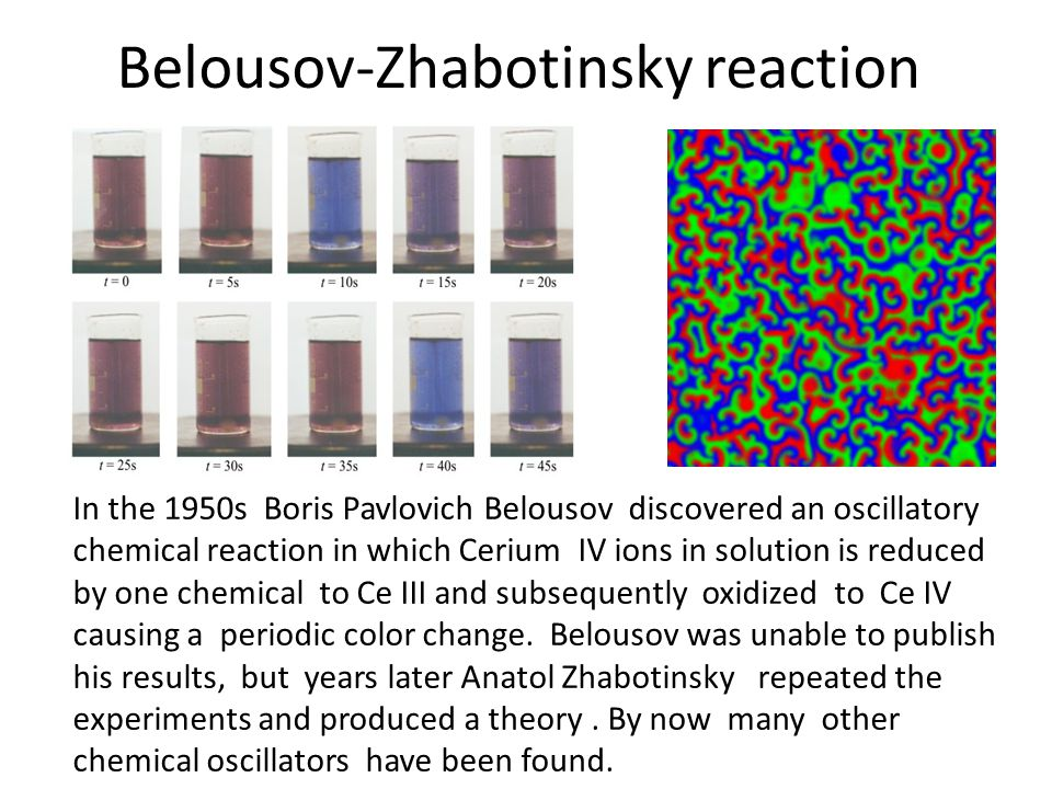 Belousov-Zhabotinsky reaction
