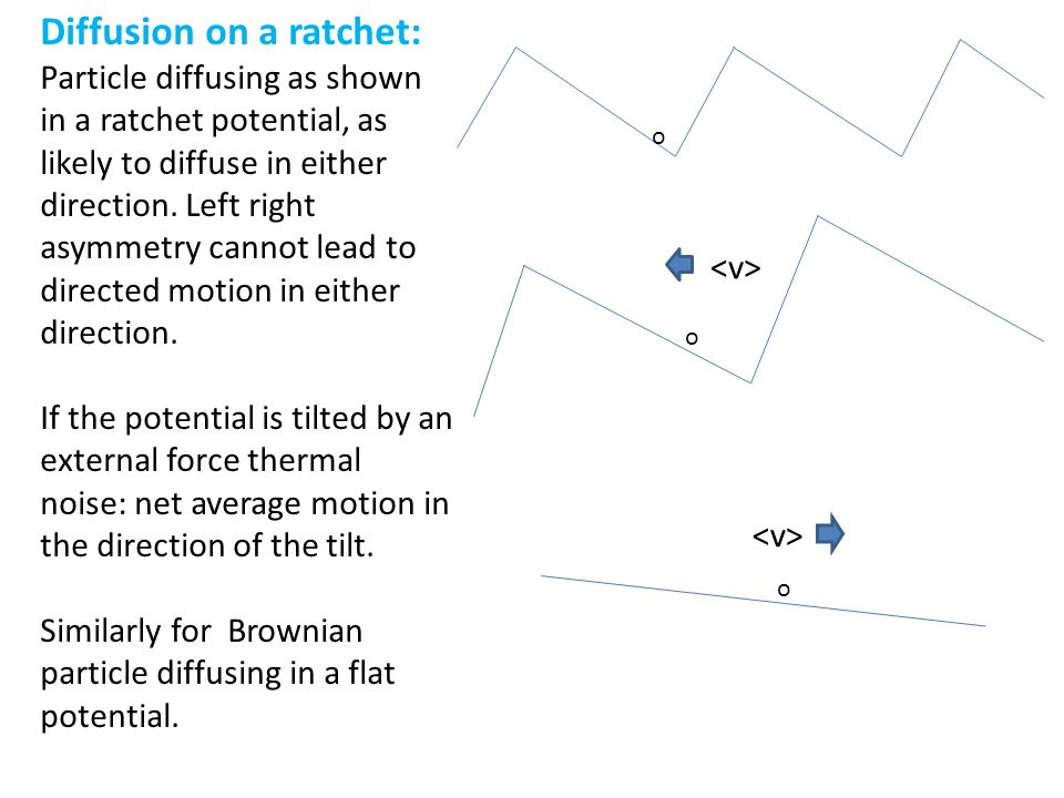 Diffusion on a ratchet: