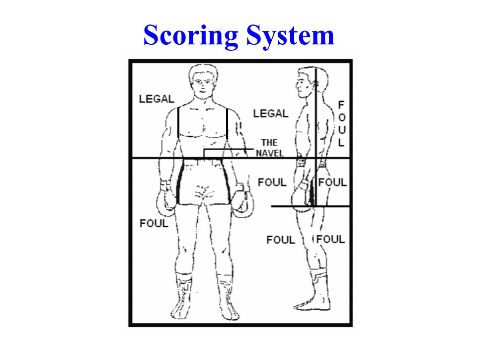 Scoring System TARGET AREA