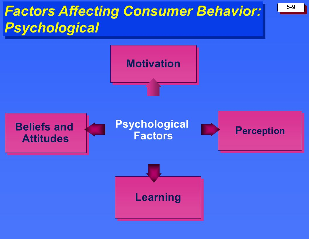 Factors that affects the behavior of