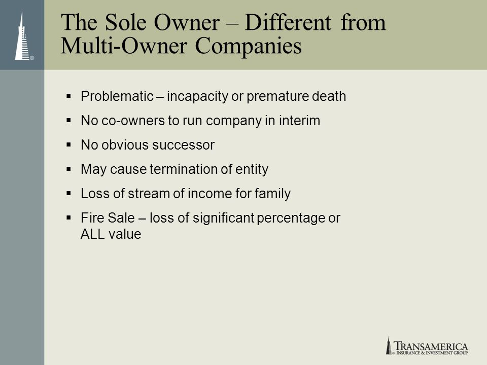 The Sole Owner – Different from Multi-Owner Companies