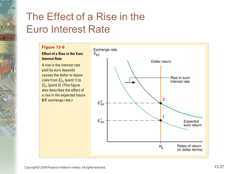 The Effect of a Rise in the Euro Interest Rate