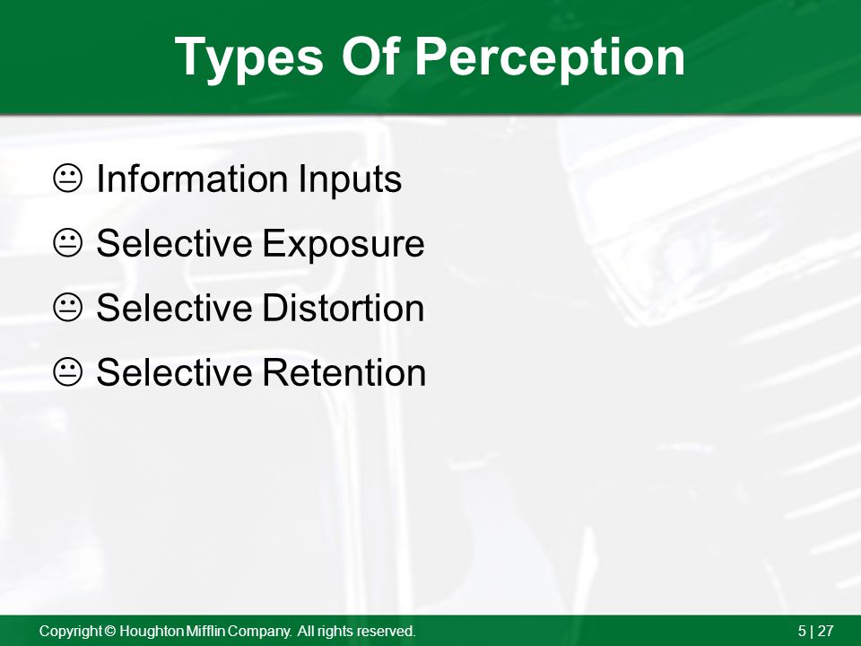 Types Of Perception Information Inputs Selective Exposure